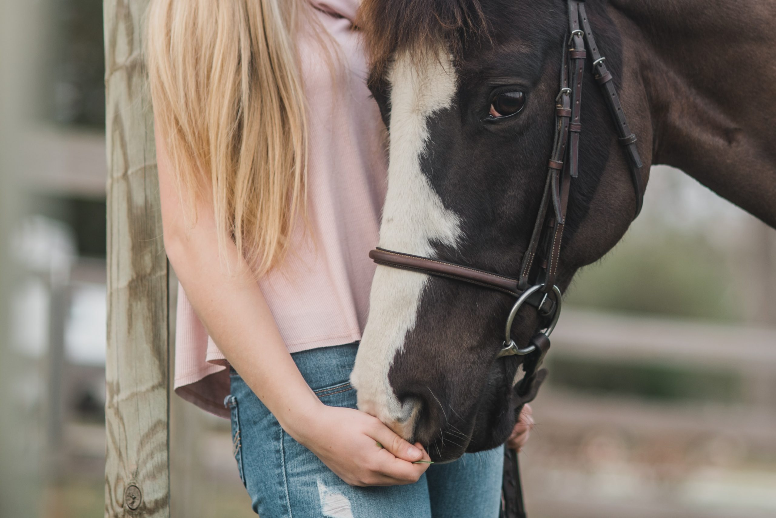 Equine Therapy Helps Teens Build Nonverbal Social Skills